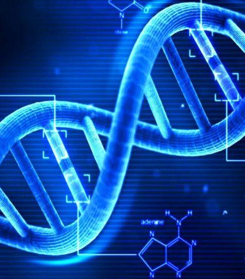施術とヒトの遺伝子